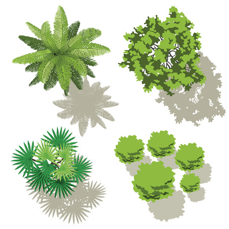 Trees top view, design for map 일러스트