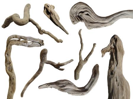 driftwood isolated 版權商用圖片