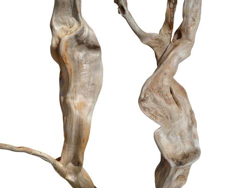 driftwood isolated Stock Photo