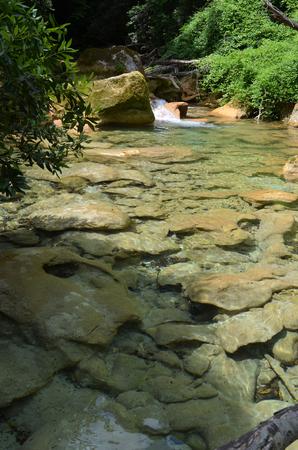 純粋なフランスの川と澄んだ水