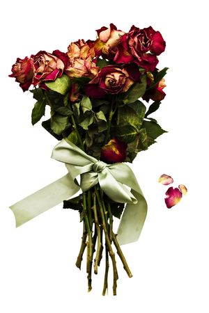 Withered rose bouquet with falling petals and tied with a green satin bow. Isolated on white. photo