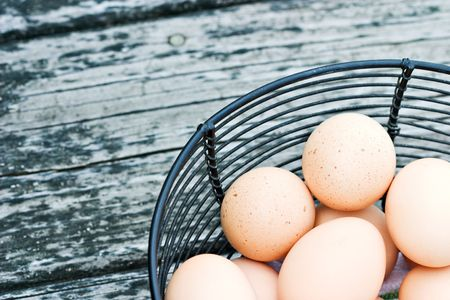 Black wire basket of freshly laid free range eggs on rustic background. photo