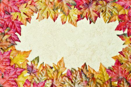 craquelure: Framework from autumn multi-coloured maple leaves