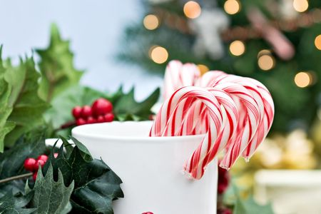 Candy canes surrounded by holly branches with christmas tree and gifts in background.  photo