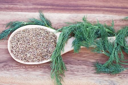 dill seed: A wooden spoon filled with dill seed and wrapped with dill weed.