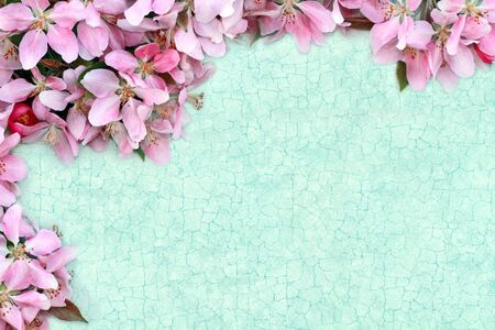 Floral craquelure background with room for your text. Stock Photo