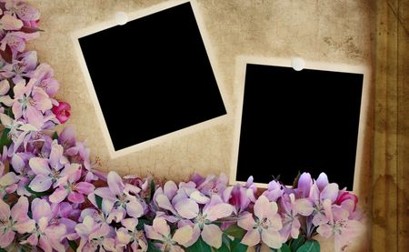 color photograph: Photo based illustration of a floral craquelure background with blank photos. Room for your text. Stock Photo