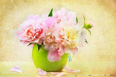 vase of flowers: illustration of vintage still life of peonies in a vase.