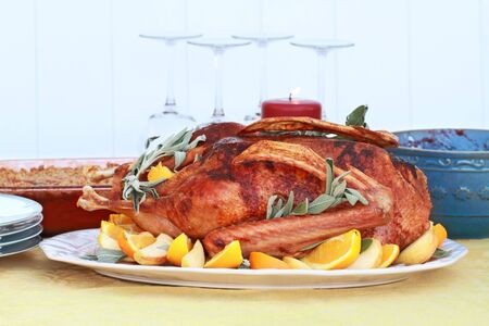 christmas goose: Baked Christmas goose with fresh oranges, apples and sage. Served with cranberry sauce and sweet potato souffle. Shallow DOF.