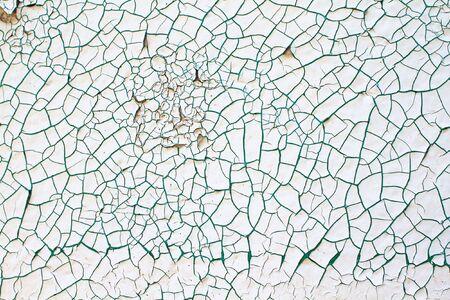 craquelure: Fondo abstracto de pintura blanca y verde chipping fuera de un muro de cemento.