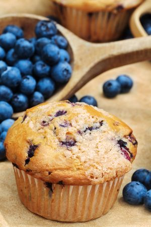 Delicious homemade blueberry muffins with fresh blueberries spilling from a wooden spoon.