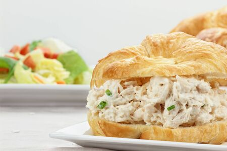 Chicken salad on a croissant bun with a healthy salad.   Stock Photo