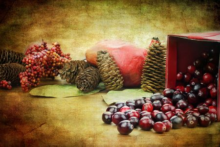 Photo based illustration of a red Christmas box spilling out fresh cranberries with pine cones an pomegranates in the background. Stock Illustration - 8219092