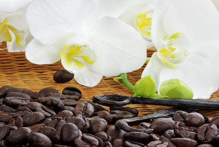 Rich roasted coffee beans with whole vanilla pods and beautiful white orchid blossoms. Stock Photo - 8349505