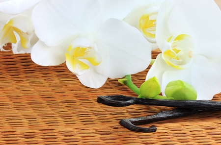 Beautiful white orchid lying beside of vanilla beans on a bamboo mat. photo