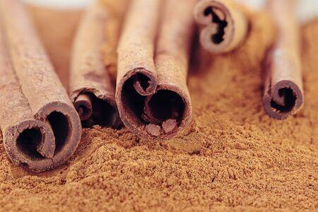 'cinnamon bark': Cinnamon bark and ground cinnamon. Selective focus with extreme shallow DOF. Some blur on lower portion of image.