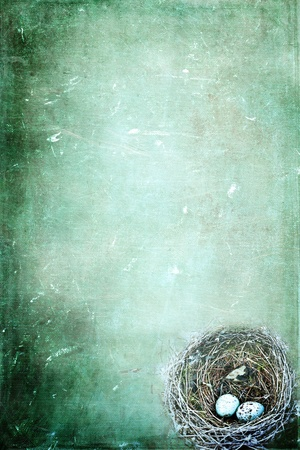 Nido de p�jaro con huevos en un fondo grunged con espacio de copia. Foto de archivo - 9351489