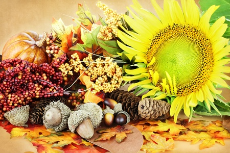 autumn colour: Autumn decorations and flowers with pumpkins, acorns and leaves.  Stock Photo