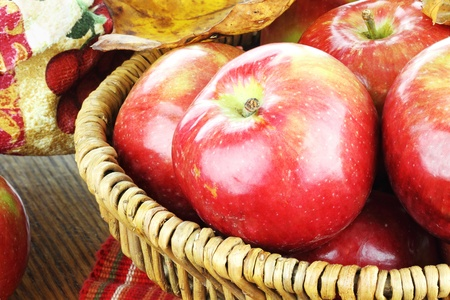 bushel: Basket of freshly picked organic red apples and autumn leaves.
