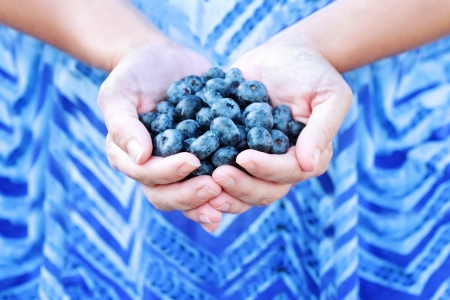 superfood: Woman offers freshly picked blueberries
