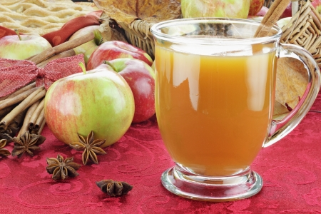 Hot apple cider with cinnamon bark, anise stars and fresh apples. Shallow depth of field with selective focus on cider.