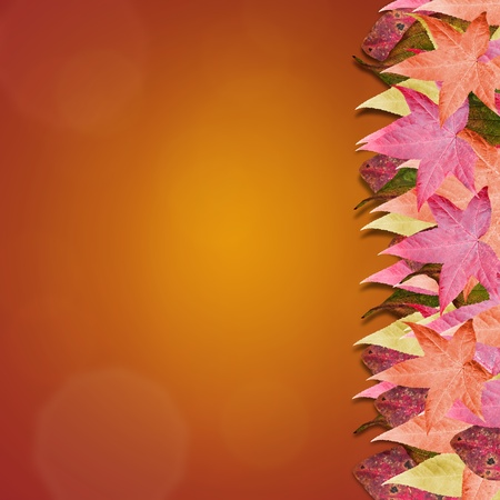 Gradient background with colorful autumn leaves. Room for copy space. photo