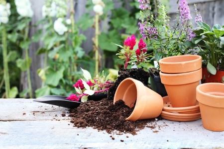 Rustikaler Tisch mit Blumentöpfen, Blumenerde, Kelle und Pflanzen vor einem alten verwitterten Gartenarbeit zu vergießen. Standard-Bild