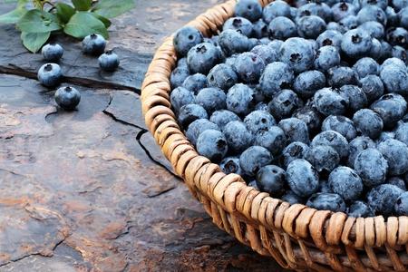Verse biologische blauwe bessen geplukt in een geweven mand op een rustieke lei achtergrond. Ondiepe diepte van gebied.