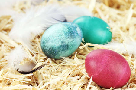 Three colored Easter eggs hidden in straw. Stock Photo - 12328100
