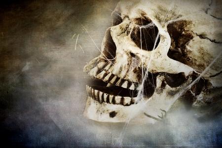 infierno: Spooky cráneo con telas de araña. Habitación para copia espacio. Foto de archivo