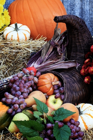 many colored: Cornucopia or Horn of Plenty with lots of fresh vegetables and fruit spilling out.