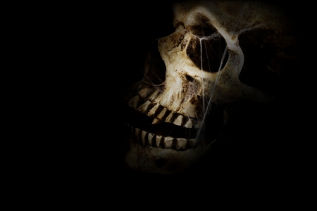 evil skull: Human skull with spider webs against a black background. Room for copy space.