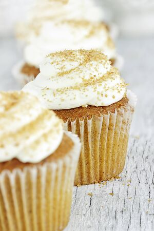 Pumpkin spice cupcakes frosted with cream cheese icing and sprinkled with brown sugar Stock Photo - 16400903