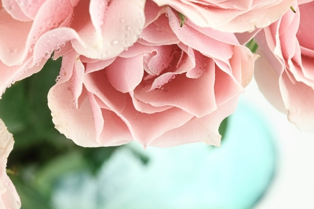 dews: Abstract of a beautiful bouquet of pink tea roses. Shallow depth of field. Stock Photo