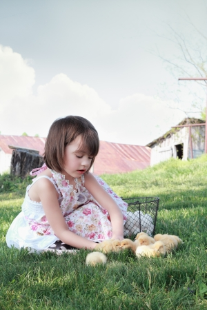 Little girl watching young yellow chicks  with chicken coop and barn in far background. Extreme shallow depth of field.