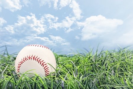 Baseball in lying in the grass on a beautiful summer day.  photo