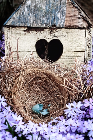 Broken blue egg lying in a nest in front of an old rustic bird house