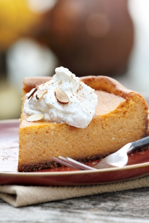 A slice of Pumpkin Cheesecake Pie with homemade whipped cream, alomonds and pumpkin spice  Extreme shallow depth of field  photo