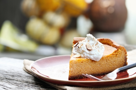 A slice of Pumpkin Cheesecake Pie with homemade whipped cream, almonds and pumpkin spice  Extreme shallow depth of field