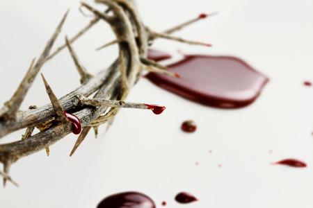 corona de espinas: Corona de espinas con gotas de sangre sobre fondo blanco