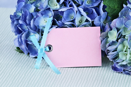 Blank card and flowers over with beautiful hydrangeas and room for your text. Shallow depth of field. photo