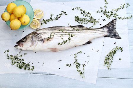 water thyme: Freshly caught striped bass being prepared for dinner.