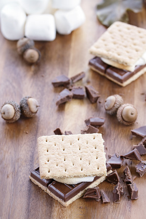 Delicious Smores with chocolate and marshmallows. Extreme shallow depth of field. Banco de Imagens