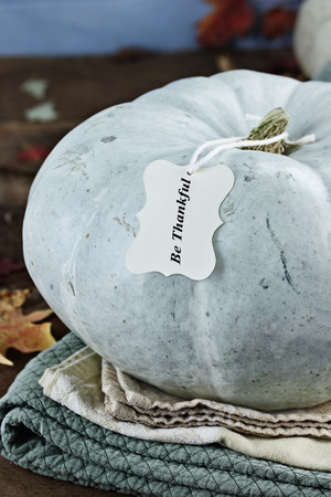 Thanksgiving holiday, blue or teal colored pumpkin still life decoration with with greeting card and text of Be Thankful. Extreme shallow depth of field.