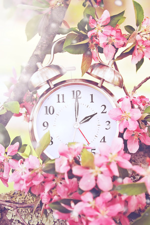 Set your clocks back in spring with this whimsical image of a clock surrounded by spring flowers set to 2 o clock! Extreme shallow depth of field with selective focus on clock. Standard-Bild