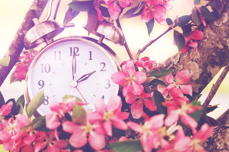 life change: Set your clocks back in spring with this whimsical image of a clock surrounded by spring flowers set to 2 o clock! Extreme shallow depth of field with selective focus on clock. Stock Photo