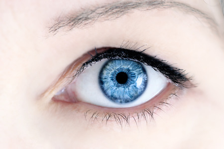 Macro of a womans beautiful blue eyes. Extreme shallow depth of field with selective focus on center of eye.