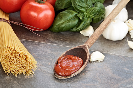 marinara: Spaghetti sauce with pasta, basil leaves, garlic and fresh tomatoes with extreme shallow depth of field.