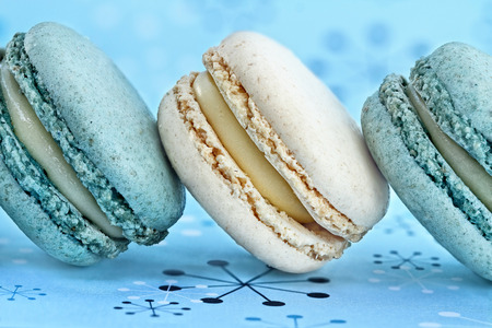 Blueberry and vanilla macarons on a row. Extreme shallow depth of field with selective focus on macarons.