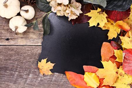 dynia: Puste pokładzie kredy otoczony jesiennych liści, kwiatów i białe dynie na tle tamtejsze.